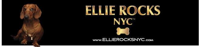 ELLIEROCKSNYC_PressRelease2009-08-27