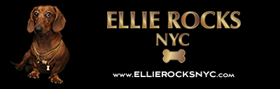 Diamond Dog New York re-launches as ELLIE ROCKS NYC