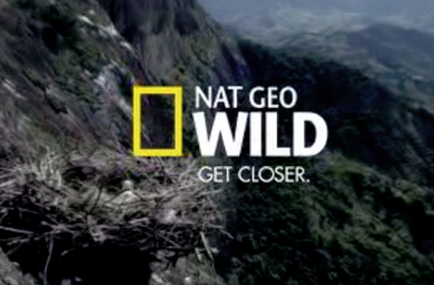 Lions, Tigers and Bears are Just the Beginning with Spring 2010 Launch of New Cable Network Nat Geo Wild