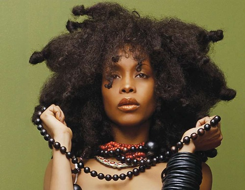 "Erykah Badu gets fined and 6 months probation for ""Window Seat"" video"