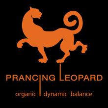 Prancing Leopard orange and black logo